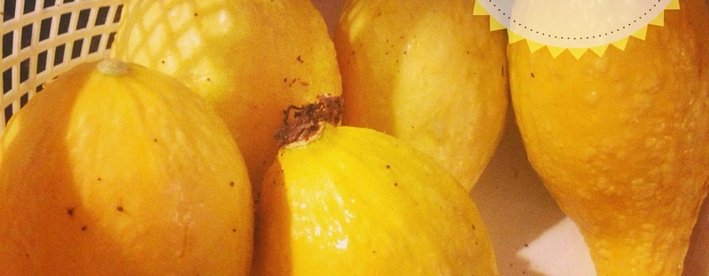 Yellow Squash | The Lush's Blush blog