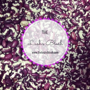 The Lush's Blush blog