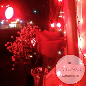 Valentine's Dinner | The Lush's Blush blog